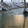 NoPP_Izlet_25.1_.2014_-_Izvir_Ljubljanice_10_.jpg